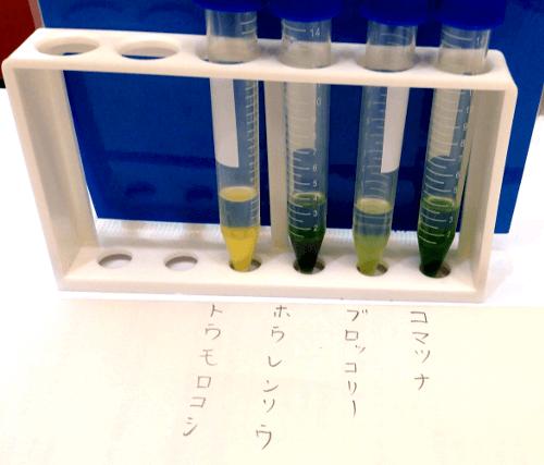 DNAの試験管