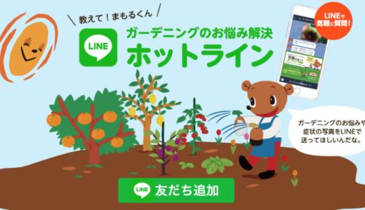 園芸初心者におすすめ!LINEで相談できるアース製薬の「ガーデニングのお悩み解決ホットライン」がすごい!