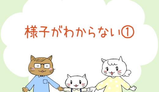 【4コマ漫画】第30話 様子がわからない①(#一人っ子男子を育てています)