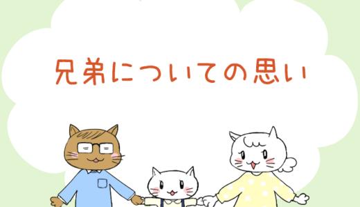 【4コマ漫画】第12話 兄弟についての思い(#一人っ子男子を育てています)