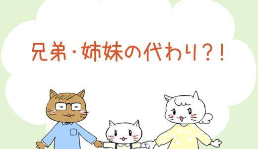 【4コマ漫画】第15話 兄弟・姉妹の代わり?!(#一人っ子男子を育てています)