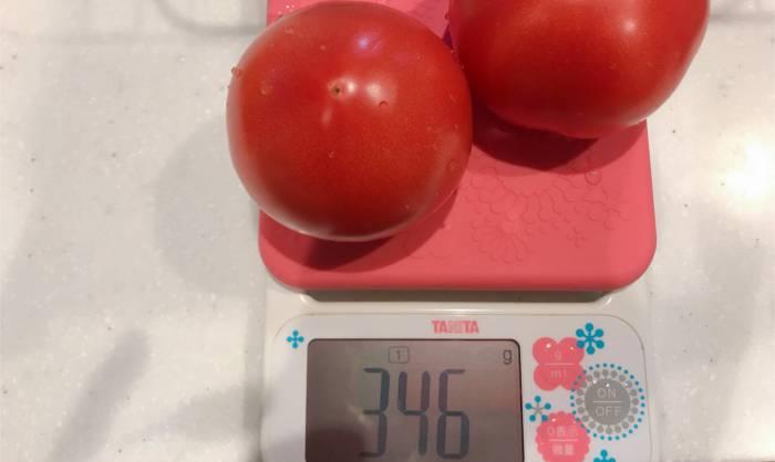 トマトの分量