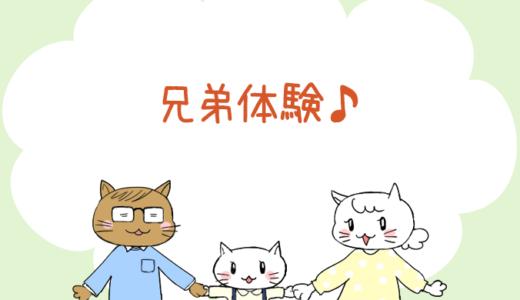 【4コマ漫画】第49話 兄弟体験♪(#一人っ子男子を育てています)