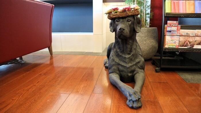 ラウンジの犬