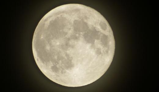 国立科学博物館の夜の天体観測(天体観望公開)に行ってみた!当日の流れや申込み方法を解説します♪