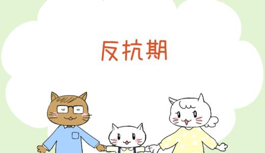 【4コマ漫画】第67話 反抗期(#一人っ子男子を育てています)