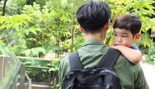 4歳児になっても「抱っこして」ばかりで歩かない。そんな子を持つ親の悩み記録です。