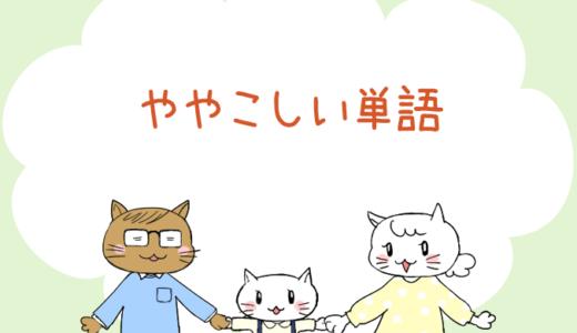 【4コマ漫画】第82話 ややこしい単語(#一人っ子男子を育てています)