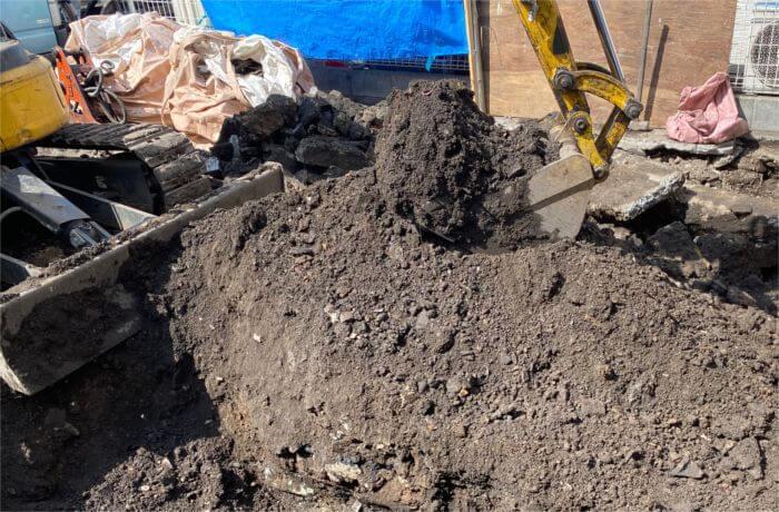 掘り起こし作業